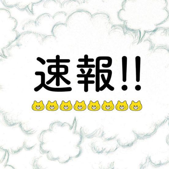 1月7日の朝日新聞朝刊に、ノラネコぐんだん登場!
